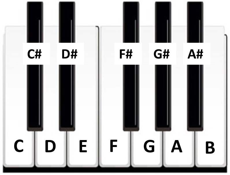 How To Read Piano Notes?